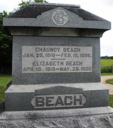 BEACH, ELIZABETH - Madison County, Ohio | ELIZABETH BEACH - Ohio Gravestone Photos