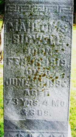 BIDWELL, MAHLON S. - Madison County, Ohio | MAHLON S. BIDWELL - Ohio Gravestone Photos