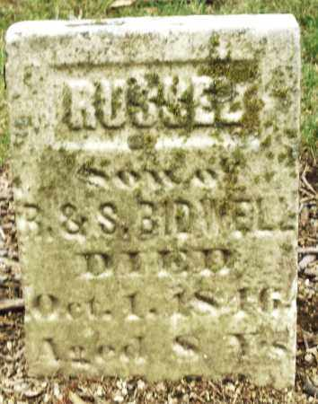 BIDWELL, RUSSEL - Madison County, Ohio | RUSSEL BIDWELL - Ohio Gravestone Photos