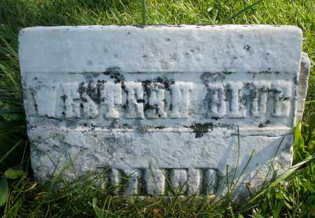 BLUE, WESTERN - Madison County, Ohio | WESTERN BLUE - Ohio Gravestone Photos