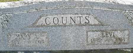 COUNTS, MARY A. - Madison County, Ohio | MARY A. COUNTS - Ohio Gravestone Photos