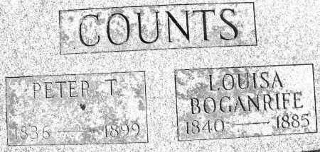 BOGANRIFE COUNTS, LOUISA - Madison County, Ohio | LOUISA BOGANRIFE COUNTS - Ohio Gravestone Photos