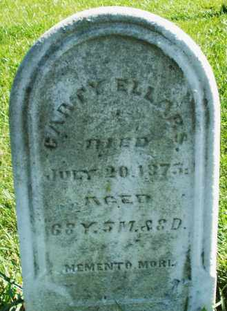 ELLARS, GARTY - Madison County, Ohio | GARTY ELLARS - Ohio Gravestone Photos