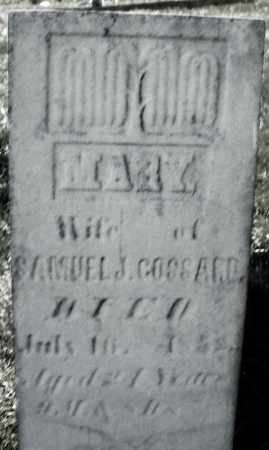 GOSSARD, MARY - Madison County, Ohio | MARY GOSSARD - Ohio Gravestone Photos