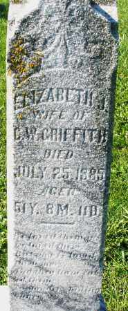GRIFFITH, ELIZABETH J. - Madison County, Ohio | ELIZABETH J. GRIFFITH - Ohio Gravestone Photos