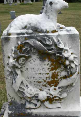 GUY, EDNA - Madison County, Ohio | EDNA GUY - Ohio Gravestone Photos