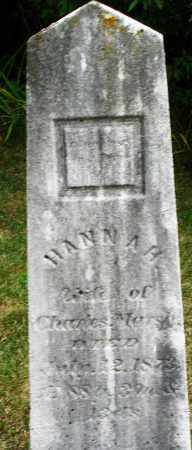 MARSH, HANNAH - Madison County, Ohio | HANNAH MARSH - Ohio Gravestone Photos
