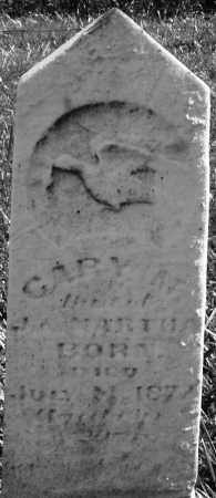 MARTHA ?, GARY M. - Madison County, Ohio | GARY M. MARTHA ? - Ohio Gravestone Photos