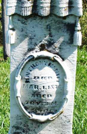 MCNIEL, ANTHONY - Madison County, Ohio   ANTHONY MCNIEL - Ohio Gravestone Photos