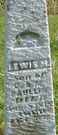 PAULLIN, LEWIS M. - Madison County, Ohio | LEWIS M. PAULLIN - Ohio Gravestone Photos