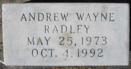 RADLEY, ANDREW WAYNE - Madison County, Ohio | ANDREW WAYNE RADLEY - Ohio Gravestone Photos