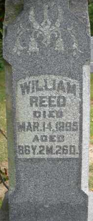 REED, WILLIAM - Madison County, Ohio | WILLIAM REED - Ohio Gravestone Photos