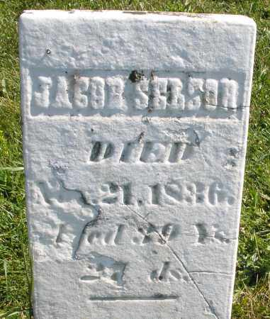 SELSOR, JACOB - Madison County, Ohio | JACOB SELSOR - Ohio Gravestone Photos