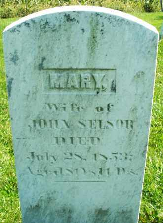 SELSOR, MARY - Madison County, Ohio | MARY SELSOR - Ohio Gravestone Photos