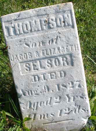 SELSOR, THOMPSON - Madison County, Ohio | THOMPSON SELSOR - Ohio Gravestone Photos