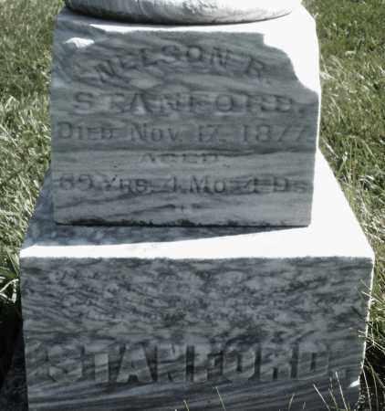 STANFORD, NELSON R. - Madison County, Ohio | NELSON R. STANFORD - Ohio Gravestone Photos