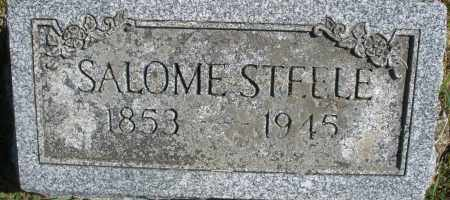 STEELE, SALOME - Madison County, Ohio | SALOME STEELE - Ohio Gravestone Photos