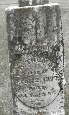 THOMAS, F. O. - Madison County, Ohio | F. O. THOMAS - Ohio Gravestone Photos