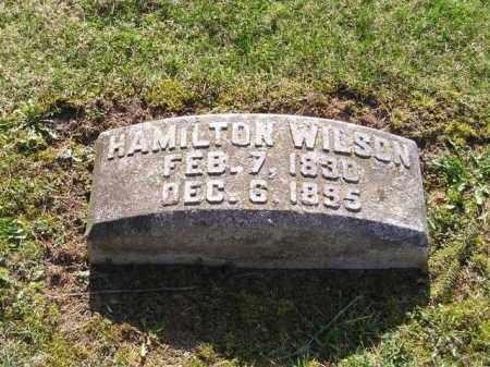 WILSON, ALEXANDER HAMILTON - Madison County, Ohio | ALEXANDER HAMILTON WILSON - Ohio Gravestone Photos