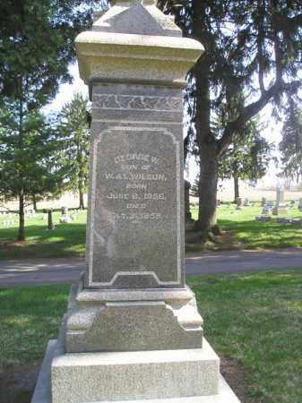 WILSON, GEORGE WASHINGTON - Madison County, Ohio | GEORGE WASHINGTON WILSON - Ohio Gravestone Photos