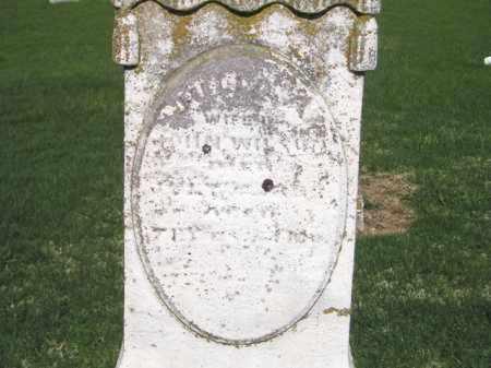 WILSON, JULIA ANN - Madison County, Ohio | JULIA ANN WILSON - Ohio Gravestone Photos