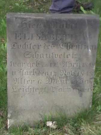 ?, ELISABETH - Mahoning County, Ohio | ELISABETH ? - Ohio Gravestone Photos