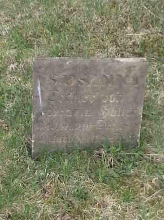 ?, SUSANNA - Mahoning County, Ohio | SUSANNA ? - Ohio Gravestone Photos
