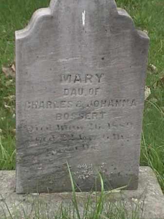 BOSSERT, MARY - Mahoning County, Ohio | MARY BOSSERT - Ohio Gravestone Photos