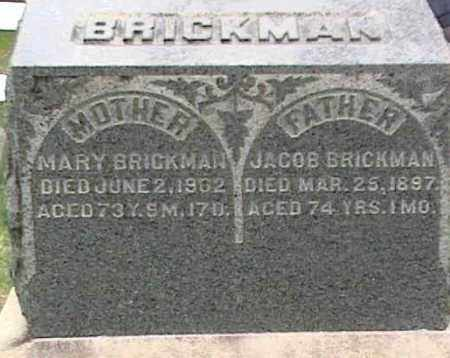 BRICKMAN, MARY - Mahoning County, Ohio | MARY BRICKMAN - Ohio Gravestone Photos