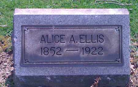 SPENCER ELLIS, ALICE A. - Mahoning County, Ohio | ALICE A. SPENCER ELLIS - Ohio Gravestone Photos