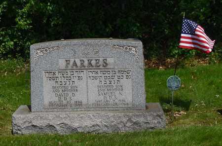 FARKES, DAVID - Mahoning County, Ohio | DAVID FARKES - Ohio Gravestone Photos