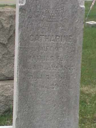 FLAIG, CATHARINE - Mahoning County, Ohio | CATHARINE FLAIG - Ohio Gravestone Photos