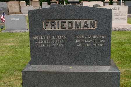 FRIEDMAN, FANNY - Mahoning County, Ohio | FANNY FRIEDMAN - Ohio Gravestone Photos