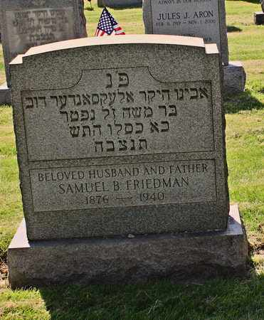 FRIEDMAN, SAMUEL - Mahoning County, Ohio | SAMUEL FRIEDMAN - Ohio Gravestone Photos