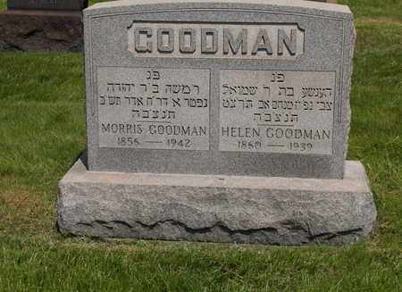 FRIEDMAN GOODMAN, HELEN - Mahoning County, Ohio | HELEN FRIEDMAN GOODMAN - Ohio Gravestone Photos