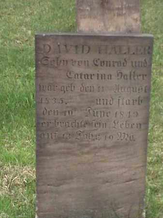 HALLER, DAVID - Mahoning County, Ohio | DAVID HALLER - Ohio Gravestone Photos