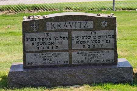 KRAVITZ, ROSE - Mahoning County, Ohio | ROSE KRAVITZ - Ohio Gravestone Photos