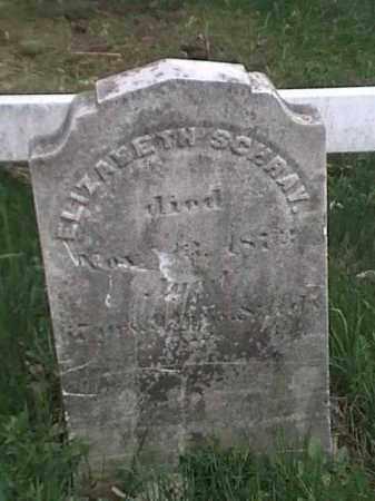 SCHRAY, ELIZABETH - Mahoning County, Ohio | ELIZABETH SCHRAY - Ohio Gravestone Photos