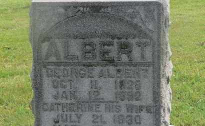 ALBERT, CATHERINE - Marion County, Ohio | CATHERINE ALBERT - Ohio Gravestone Photos