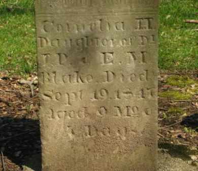 BLAKE, CORNELIA H. - Marion County, Ohio | CORNELIA H. BLAKE - Ohio Gravestone Photos