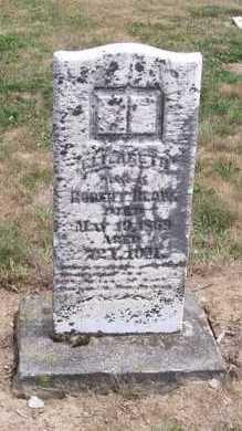 BLOW, ELIZABETH - Marion County, Ohio | ELIZABETH BLOW - Ohio Gravestone Photos