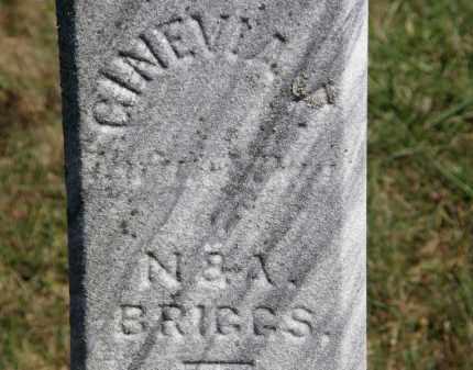 BRIGGS, GINEVIA F. - Marion County, Ohio | GINEVIA F. BRIGGS - Ohio Gravestone Photos