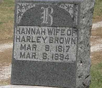 BROWN, HANNAH - Marion County, Ohio   HANNAH BROWN - Ohio Gravestone Photos