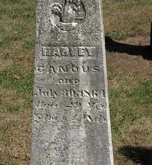 CANOUS, HARVEY - Marion County, Ohio | HARVEY CANOUS - Ohio Gravestone Photos