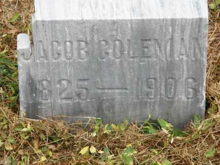 COLEMAN, JACOB - Marion County, Ohio | JACOB COLEMAN - Ohio Gravestone Photos