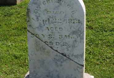 CRISSINGER, ELY - Marion County, Ohio | ELY CRISSINGER - Ohio Gravestone Photos