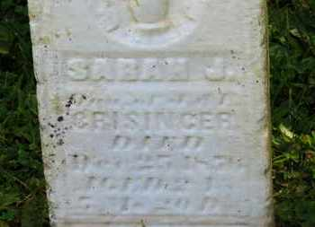 CRISSINGER, SARAH J. - Marion County, Ohio | SARAH J. CRISSINGER - Ohio Gravestone Photos