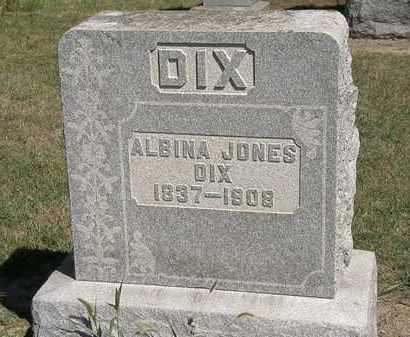 DIX, ALBINA JONES - Marion County, Ohio   ALBINA JONES DIX - Ohio Gravestone Photos