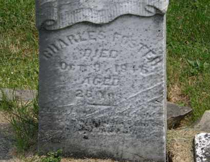 FOSTER, CHARLES - Marion County, Ohio | CHARLES FOSTER - Ohio Gravestone Photos