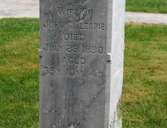 GILLESRIE, JENNIE - Marion County, Ohio | JENNIE GILLESRIE - Ohio Gravestone Photos